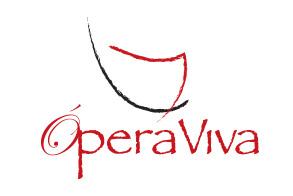 Website V. Ópera Viva